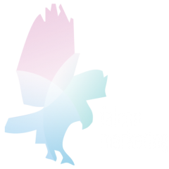 Web Development, Online Marketing Company :: 866-510-0185 FalconMarketing.com